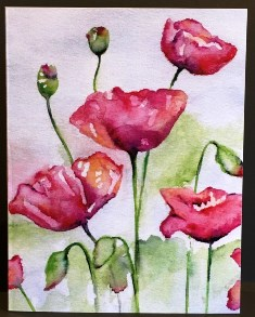 Poppy<br> (NOTECARD 6-PACK)